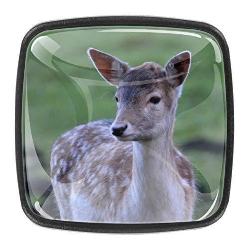 4 pomos de cristal colorido para armario, armario, cajón, tirador de puerta, diseño de ciervos