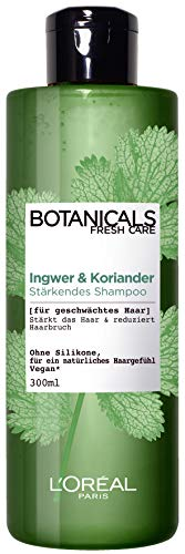 L'Oréal Paris Botanicals Fresh Care Ingwer Und Koriander Shampoo, 1er Pack(1 x 300 ml)