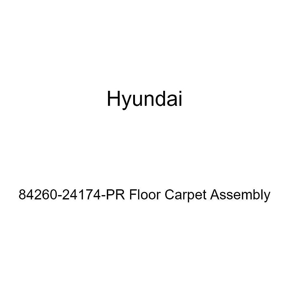 Genuine Hyundai 84260-24174-PR Floor Carpet Assembly