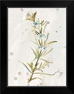 CANVAS ON DEMAND Antique Earthtone Herbs III Black Framed Art Print, 15