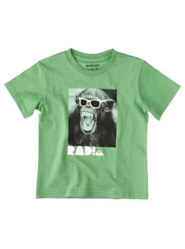 Quiksilver T-Shirt Short Sleeve Basic Boy Camiseta Manga Corta, Bebé-niñas, Chlorophil, 4-5 años-104-110