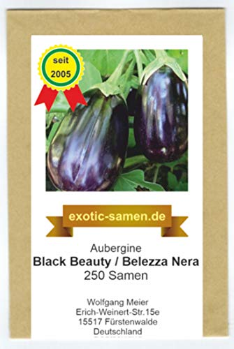 Aubergine - Black Beauty - Bellezza Nera - alte Sorte - 250 Samen