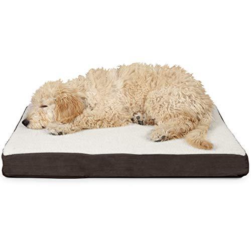 Furhaven Cama para perro | Colchón ortopédico de lujo tradicional de espuma para mascotas – Disponible en varios colores y estilos, espuma ortopédica, Sherpa Espresso, Med