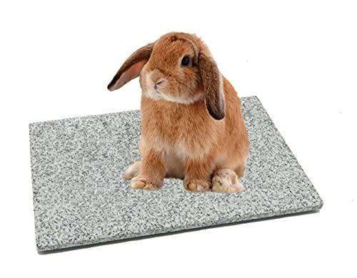 DiConcetto Kratzstein/Pflegestein sowie Kühlplatte/Klimastein aus Granit für Hamster, Meerschweinchen, Hasen und weitere Nager (Hell 30 x 20 cm)