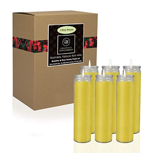 CocoSoy Candles, Yellow 7 Day Sanctuary Glass Jar Candles Great for Religious, Memorial, Party Decor, Vigils, Prayers, Blessing, 100% Natural Coconut Soy Wax - 6 Pack
