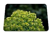22cmx18cm マウスパッド (植物の花びらのクローズアップ) パターンカスタムの マウスパッド