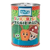 Outward Hound Surprise Veggie Pals Dog Toys - UNbox and Surprise! Collect All 3 Squeakin Veggie Pals Dog Toys!