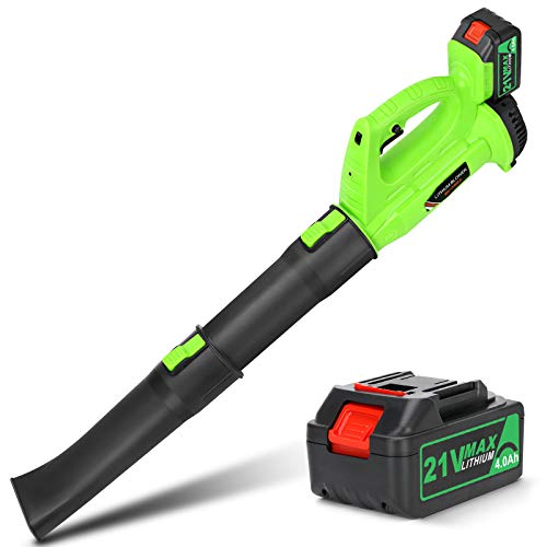 Cordless Leaf Blower - BHY 21V Electric Leaf Blower with 4.0Ah Battery, 2 Adjustable Tubes and 6 Adjustable Speeds, Handheld Leaf Blower for Leaves, Snow Debris,Yard, Work Around The House
