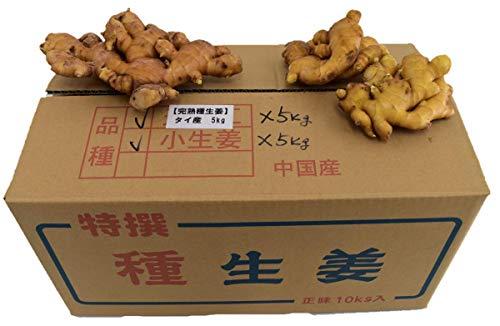 【種生姜】タイ産 完熟種生姜(近江生姜 白)約5kg + 中国産小生姜5�s(三州生姜・中太生姜)