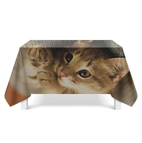 ANAZOZ Tischdecke 140X140 cm Tischwäsche Tischtücher Abwaschbar Katze Rechteckige Tischdecken Gelb Stil 9 Tischdekoration