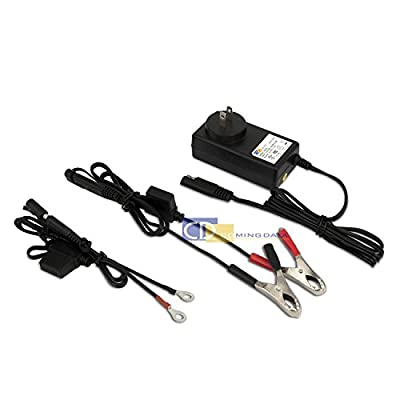 Coming Data DC 6V 12V 24V Lead Acid Battery Charger w/ Quick Connect Alligator Clips & Ring Terminal Connector (UL Certified)