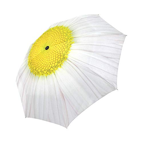 InterestPrint Daisy Windproof Auto Open and Close Foldable Umbrella,Girly Flower Travel Unbreakable Compact Sun and Rain Umbrella UV Protection,White and Yellow