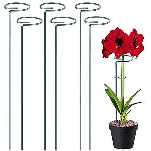 6 Piezas Estaca de Apoyo Metal Estacas de Flores Estaca de Soporte Estacas de Soporte para Plantas...