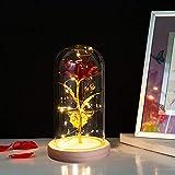 Rosa eterna artificial de La Bella y la Bestia, con luz LED en la campana de cristal y base de madera, decoración para el hogar, regalo para mujeres, niñas, cumpleaños, bodas, Navidad