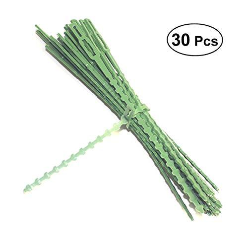 Hemoton Zelfsluitende Kabelbinder Tuin Kiwi Druivensteelstok Clips Clips Druivenbanden Plant Ondersteuning Houder Groeien Header Vergrendeling Banden Kabel Wrap Zip Banden Plastic Groen 30St