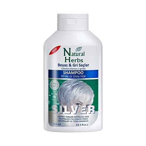 Seed Natural Herbs - Silbershampoo 400 ml - Anti-Gelbstich Haarpflege- mit Blaubeeren & Henna Extrakten- Purple Shampoo für blonde, blondierte, gesträhnte und graue Haar - No Yellow Shampoo