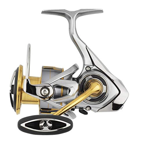 Daiwa Freams LT 2000S, Spinning Angelrolle mit Frontbremse, Flache Spule, 10224-200