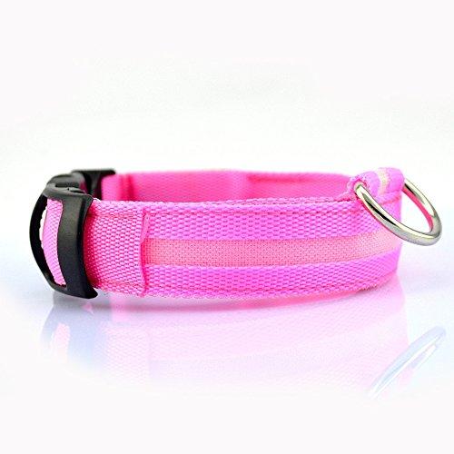 Winnes LED Hundehalsband mit USB Wiederaufladbar Blinkender LED Hunde Sicherheits Halsband Nacht Hundeband für Hunde, Haustier (XL 2.5cm X (52cm-60cm), Rosa)