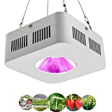 YUEN 200W Led Grow Light, Full Spectrum Plant Light with Reflector and High Par Value Cree COB for Indoor Greenhouse Plants Gardening Flowering