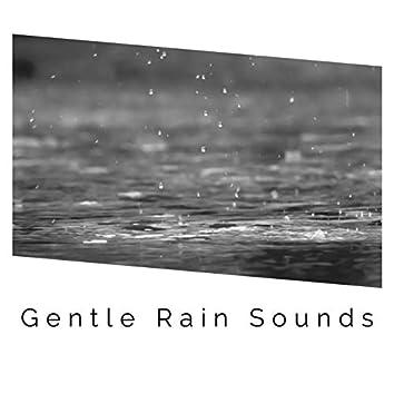 1 Hour of Gentle Rain Sound Recordings