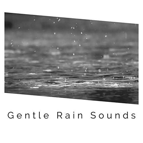White Noise Rain & Rain Sounds
