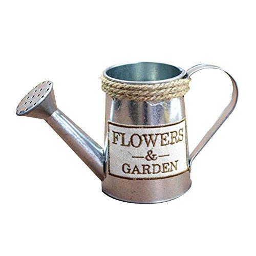 JUNGEN Jarrón Decorativo Creativo florero del Hierro de la Vendimia florero de Forma de hervidor Decoración Simple para jardín casero (Estilo 1)