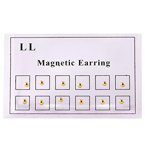 Anjetan Accesorios para La Joyería del Cuerpo Magnético Magnético Stud Rhinestone 24Pcs Portátil Portátil Ligero Ligero No Piercing Moda Casual Faux Nariz Stud