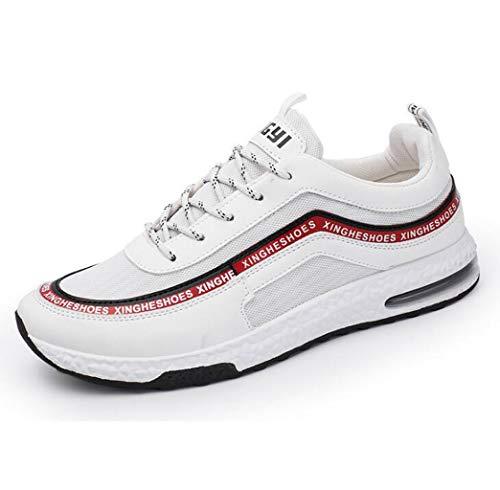 ZJEXJJ Herren Turnschuhe Freizeitschuhe Bequeme und belüftete Arbeitsschuhe Modische Laufschuhe aus Mesh (Farbe : Rot, größe : 40 EU)