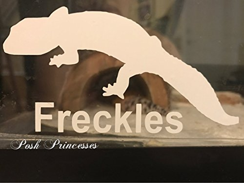 Any Color Sticker 4x5 Leopard Gecko #3 Vinyl Decal