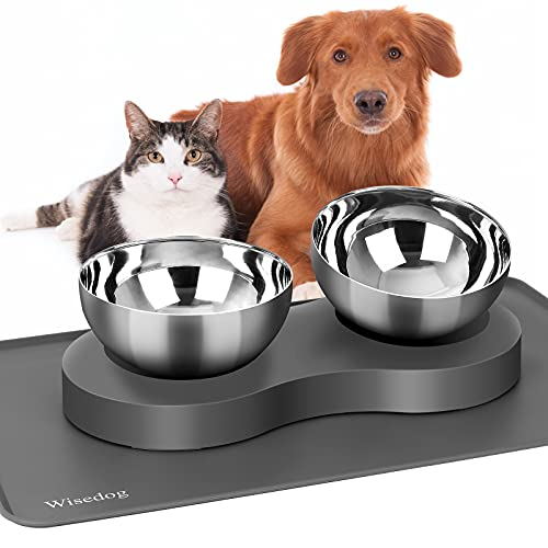 Tilted Elevated Dog Cat Feeding Bowls: Raised Cat Bowl with 1 Silicone Mat and 2 Stainless Steel Bowls for Water and Food, Suitable for Kitty and Puppy (Grey)