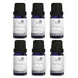 Punto Aroma - Set de 6 Fragancia para difusor humidificador - Aromaterapia - Fragancia Premium - Incluye 6 frascos de 10ml (Patchouli, Geranio, Limón, Bergamota, Menta, Sábila)