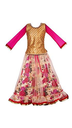 My Lil Princess Baby Girls Birthday Frock Dress_Pink Floral Lehenga_Net Fabric_5-6 Years