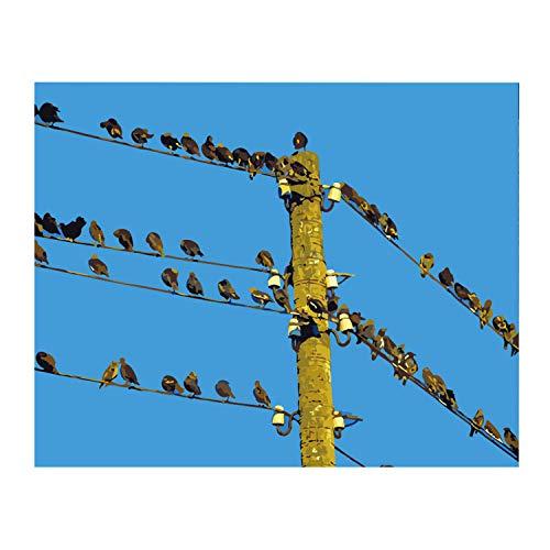 Diy 5D Kit De Pintura De Diamante Por Números Bandada De Pájaros En Un Poste Telefónico Cuadros Punto De Cruz Kit Manualidades Para Decoración De La Pared Del Hogar 30 * 40cm