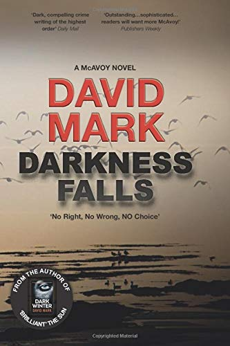 DARKNESS FALLS: The dark and pulse-pounding thriller from Sunday Times best-seller DAVID MARK (McAvoy)