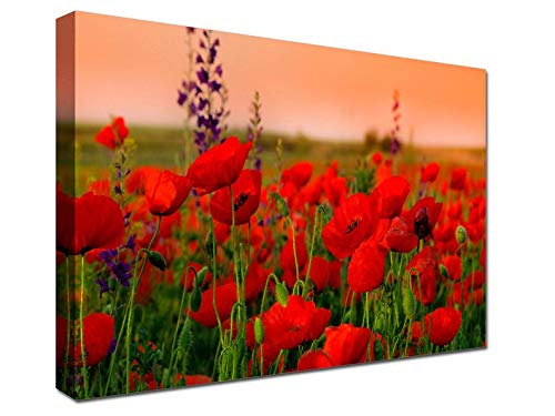 Unframe Canvas Printing 24x36 Inch Poppy field, Poppy Canvas Prints, Red Poppy field Home Decor, Poppy art, nature, flower, wall art canvas, wall decoration, Art print For Living Room/Bedroom