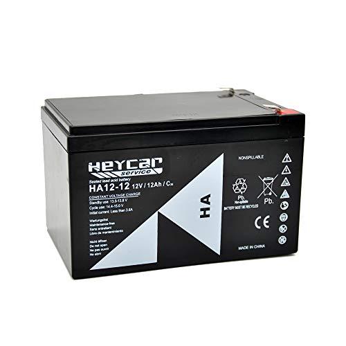 HEYCAR - Batería de Plomo AGM para aplicaciones estacionarias. 12V / 12Ah. Capacidad de descarga 180 A 3,4 Kg. 151 x 98 x 95 mm