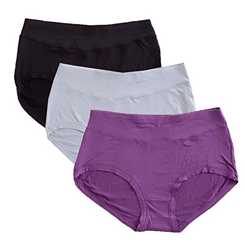 Warm Sun Women's Bamboo Viscose Fiber Multi Pack Plus Size Panties M/6(Purple,Black,Gray)