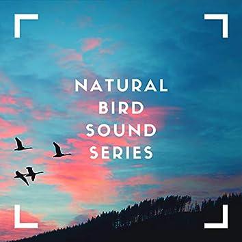 Natural Bird Sound Series
