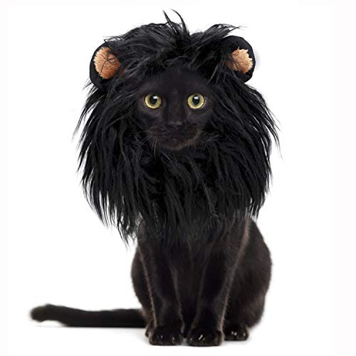 comprar pelucas gato online