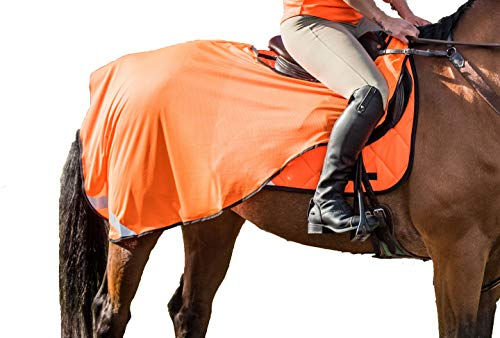 PRO - AIRTEX HIGH VISIBILITY EXERCISE SHEET Mesh Lightweight Reflective Horse Pony Summer Riding (Pony, Orange)
