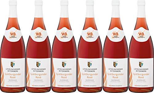 Winzer von Baden Spätburgunder Rosé Lützelsachsener Rittersberg 2018 Halbtrocken (6 x 1.0 l)