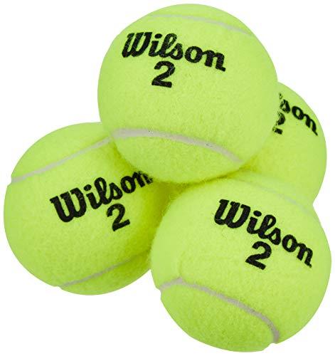 Wilson Champ Extra Duty Pelotas de tenis, tubo con 4 pelotas, para ...