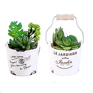 Silk Flower Arrangements ZhenLang Succulents Plants Artificial, Set of 2 Mini Artificial Succulents Desk Plant Faux Succulents in Ceramic Pots Fake Plant Decor Plastic