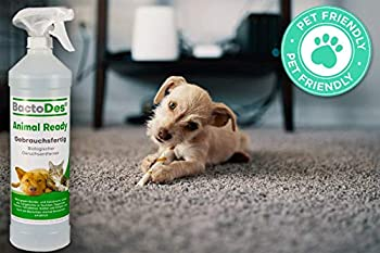 BactoDes Animal Ready – Désodorisant Anti-Taches Spray prêt à l'emploi, nettoyant enzymatique Contre l'urine de Chat, Les odeurs d'animaux