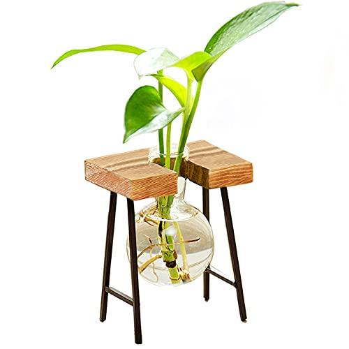 Kingbuy Desktop Air Plant Terrarium Glass Propogation Planters with Retro Solid Wood Mini Bench Holder for Hydroponic Plant Home Garden Decoration, 1 Bulb Vase