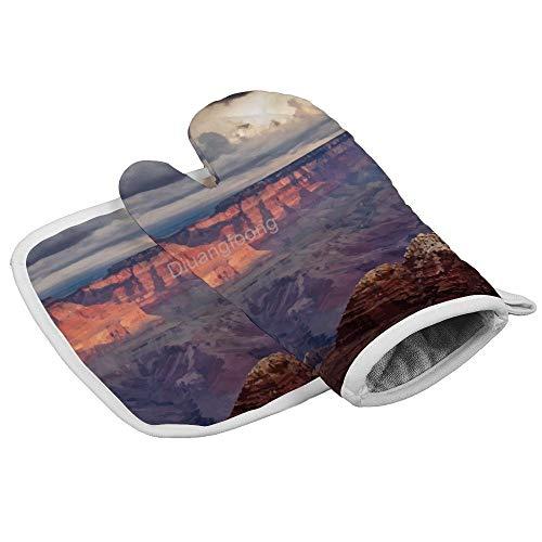 Diuangfoong Lot de 2 gants de cuisine résistants à la chaleur Grand Canyon