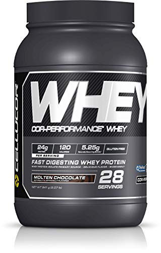 Cellucor COR-Performance Protein Powder Molten Chocolate | 100% Gluten Free + Low Fat Post Workout Muscle Growth Drink for Men & Women | 28 Servings