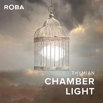 Chamber Light