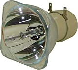 satukeji Bombilla Desnuda Compatible 5J.J3S05.001 para lámpara de proyector BENQ MS510 MW512 MX511 sin Carcasa