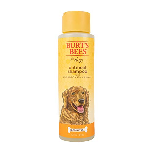 Burt's Bees Natural Oatmeal Shampoo for Dogs | Made with Colloidal Oat Flour and...